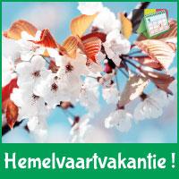 Lees verder op http://www.feestdagen-belgie.be/hemelvaartvakantie-belgie-datum-berekening-kalender-nieuws-schoolvakantie